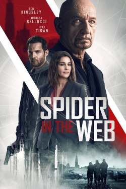 Watch Spider in the Web (2019) - Subtitrat in Romana